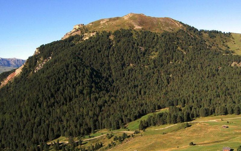 Monte Pic